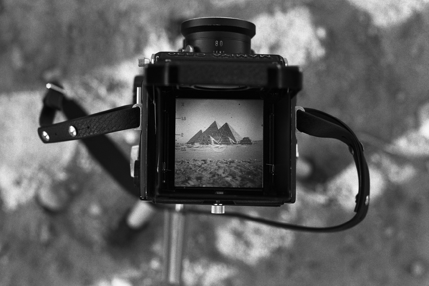 denis-roche 5 avril 1981. Gizeh, Égypte
